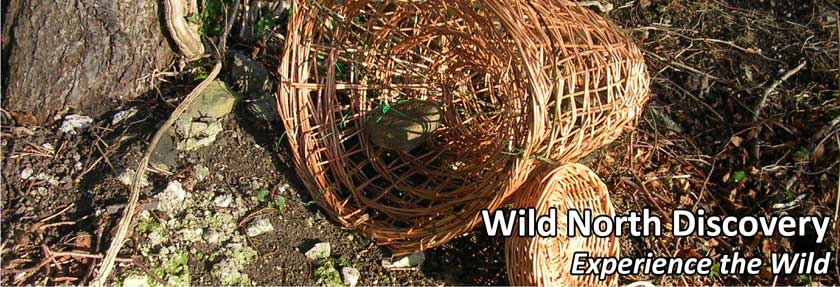 willow basket and fishtrap